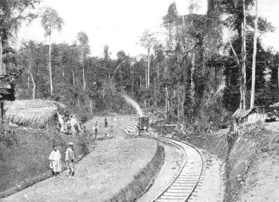 A view of Jim Abufu Station, Gold Coast Railway