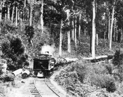 A LOG TRAIN on a private timber line at Manjimup in Western Australia.