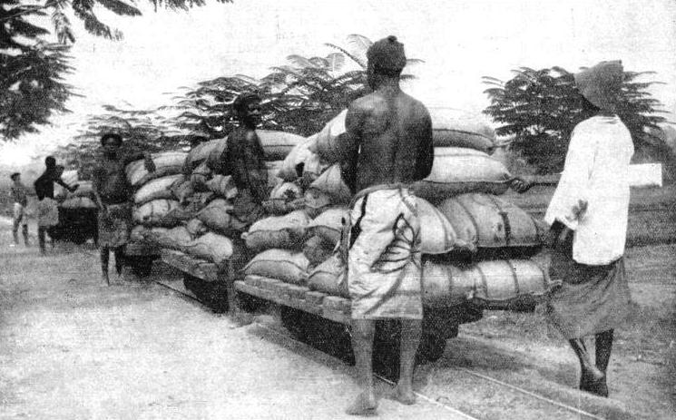 RANSPORTING COCOA from the factory at Akuse to barges on the Volta River