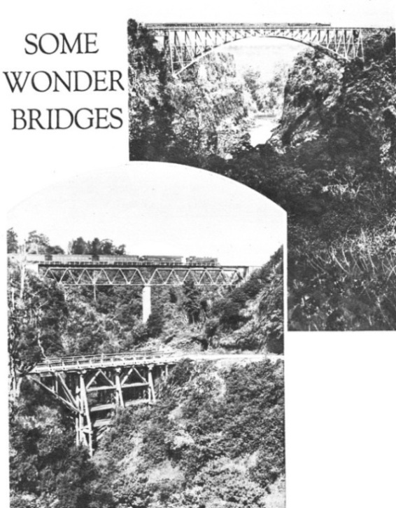 Some wonder bridges