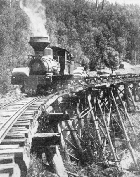"""PUFFING BILLY"" is the nickname of this timber-train operating near Powelltown, Victoria"