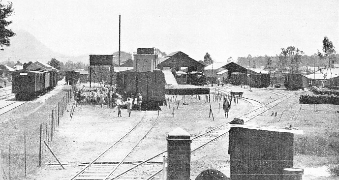THE DEPOT OF NYASALAND RAILWAYS AT LIMBE